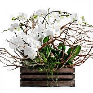 florist-banchet
