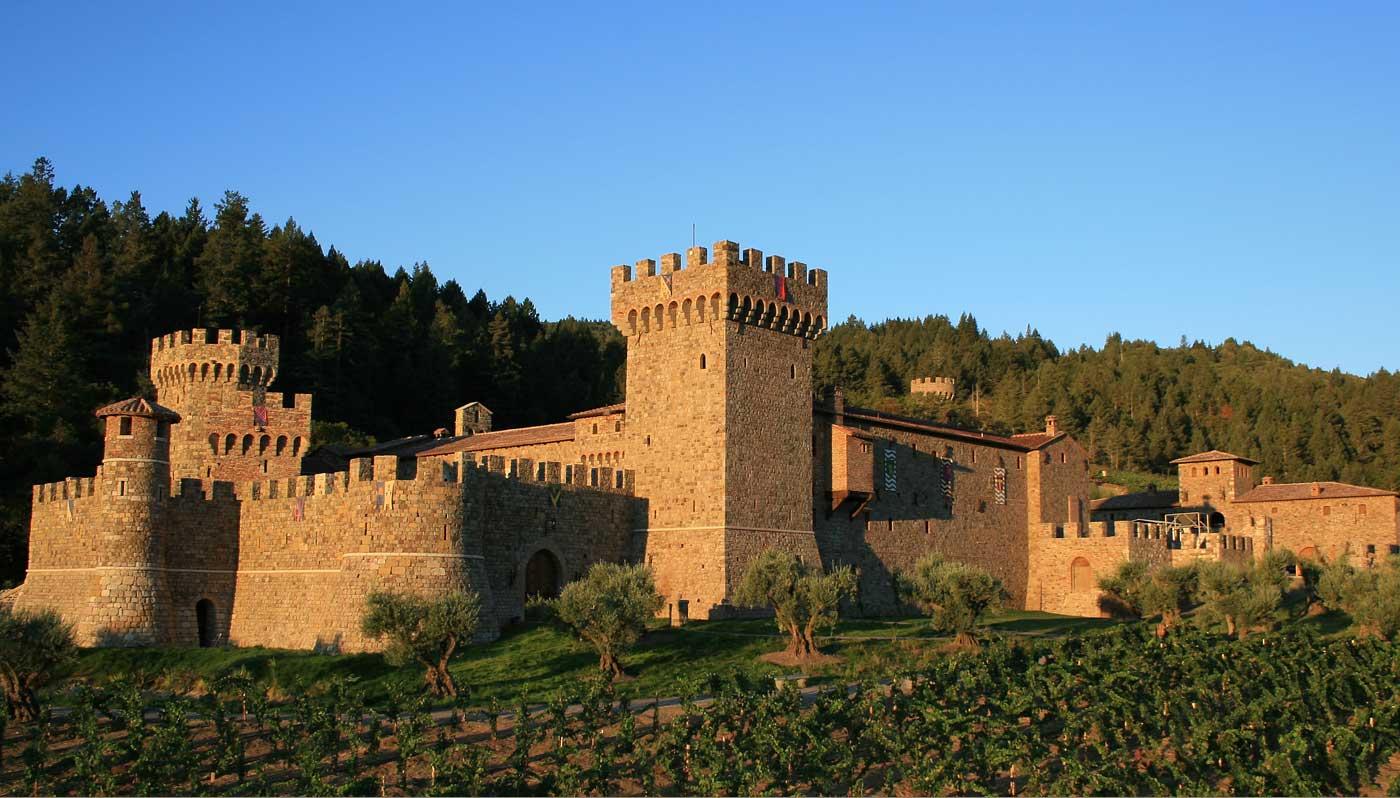 Cabernet Sauvignon Wine  Buy Wine Online  Total Wine amp More