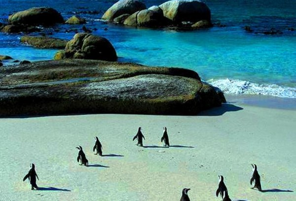 Cape Town, South Africa tourism destinations