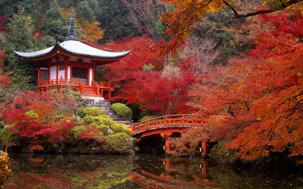 220734__japanese-garden-in-autumn_p