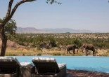 Staying in luxury safari lodges, a person gets great service, perfectly-designed accommodation and excellent location for game viewing.