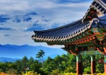 Join us on an endeavor across South Korea. Elite Club Ltd is taking you to historic landmarks, luxury resorts, and shows you the best of what Seoul has to offer.