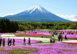 In the new and exciting Issue of Elite Club Ltd we'd like to show you Japan like you've never seen before. Luxury train ride by Shiki Shima, splendid hotels, and best if the best around the country of the rising sun.