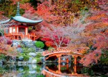 If you're planning a trip to Japan, one of the most important steps is deciding where to visit. To help you navigate the possibilities and decide where to visit, we'll give you some tips.