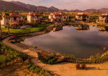 Just south of the California and Mexico border, lies Valle de Guadalupe, a sprawling wine country tucked away alongside dirt roads and farm land.